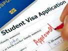 Reasons why you should hire a consultant for a student visa